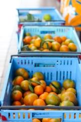 Oranges in Tahiti